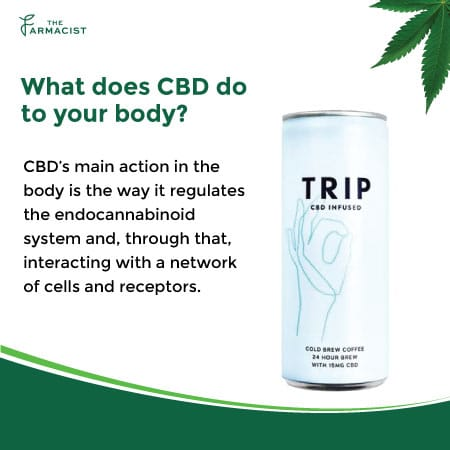What does CBD do to your Body