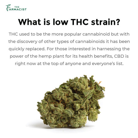 What is low THC Strain?